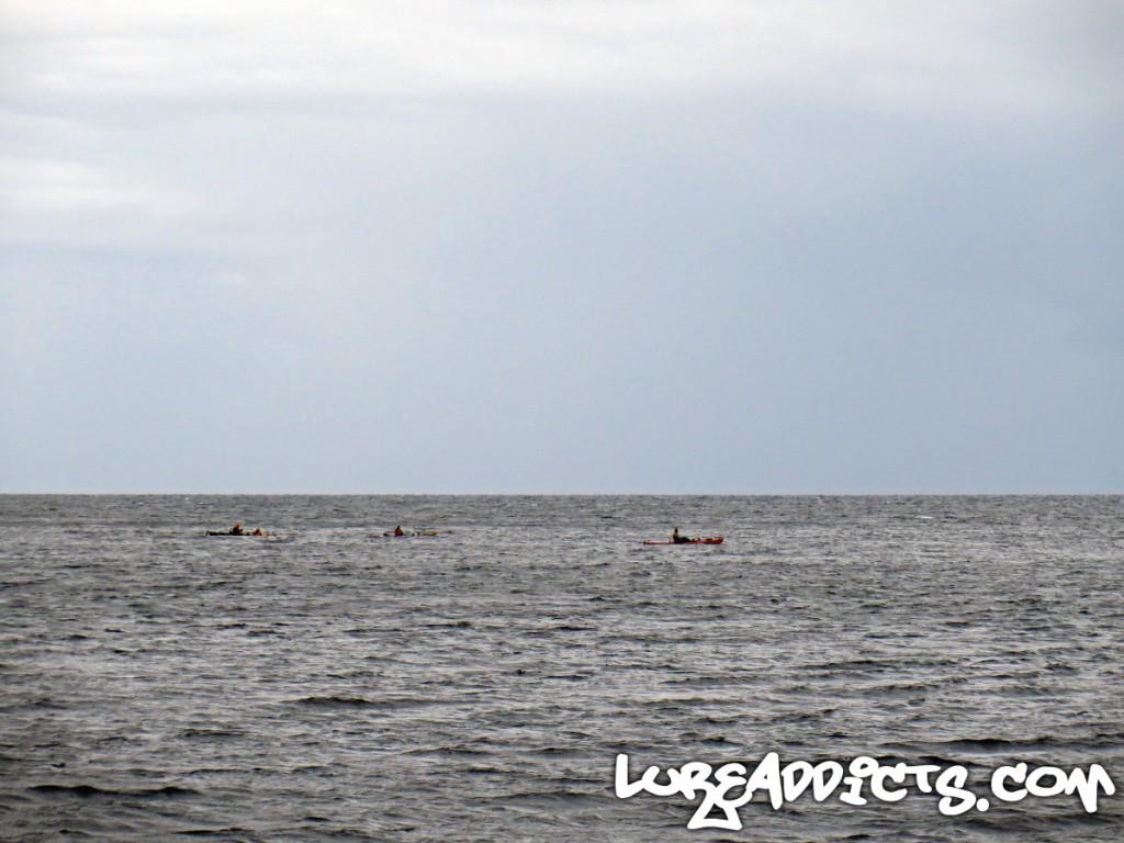 Ultimate-Kayak-Fishing-Trip-NZ-Day2-8-Lure-Addicts